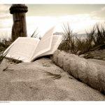 10 libros de Social Media y SEO para principiantes