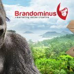 Brandominus, Marketing Online Creativo