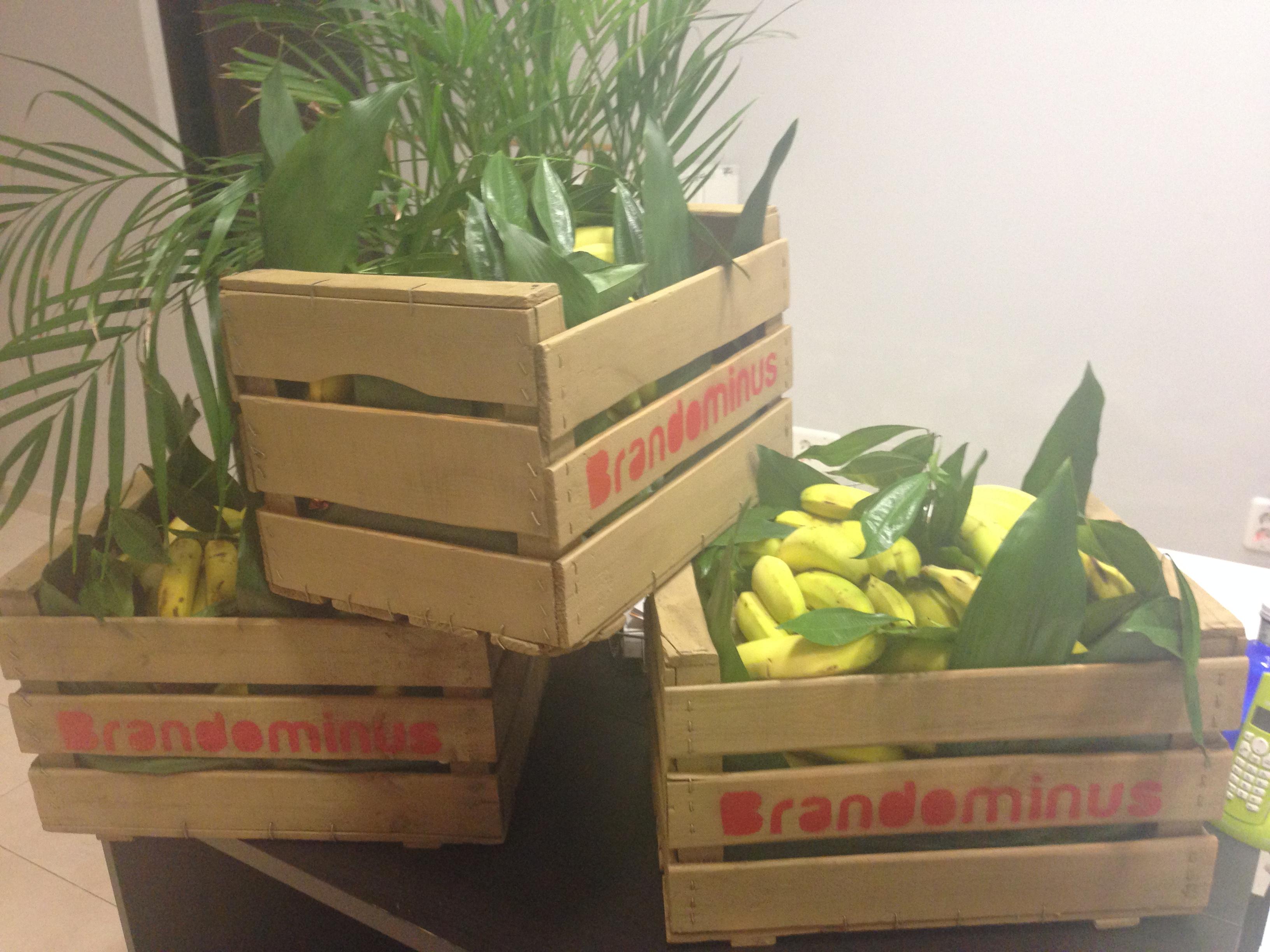 Feliz navidad y muchas bananas