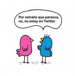 profesionales-social-media-sin-followers