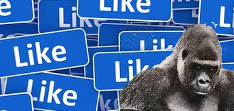 """""""See First"""" o como no ser un segundón en Facebook"""