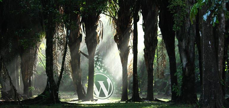 Adentrándote en WordPress (Manual de instalación)