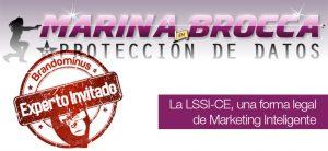 Permission marketing, LSSI y marketing legal